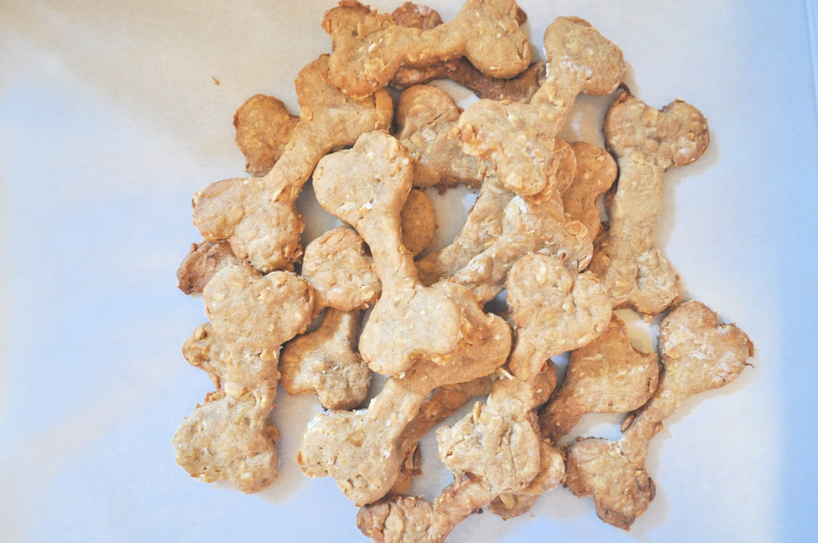 Healthy Dog Snacks  Olive & Gray Healthy homemade dog treats