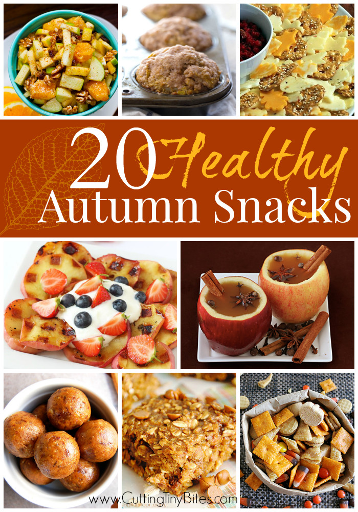 Healthy Fall Snacks  Cutting Tiny Bites 20 Healthy Fall Snacks