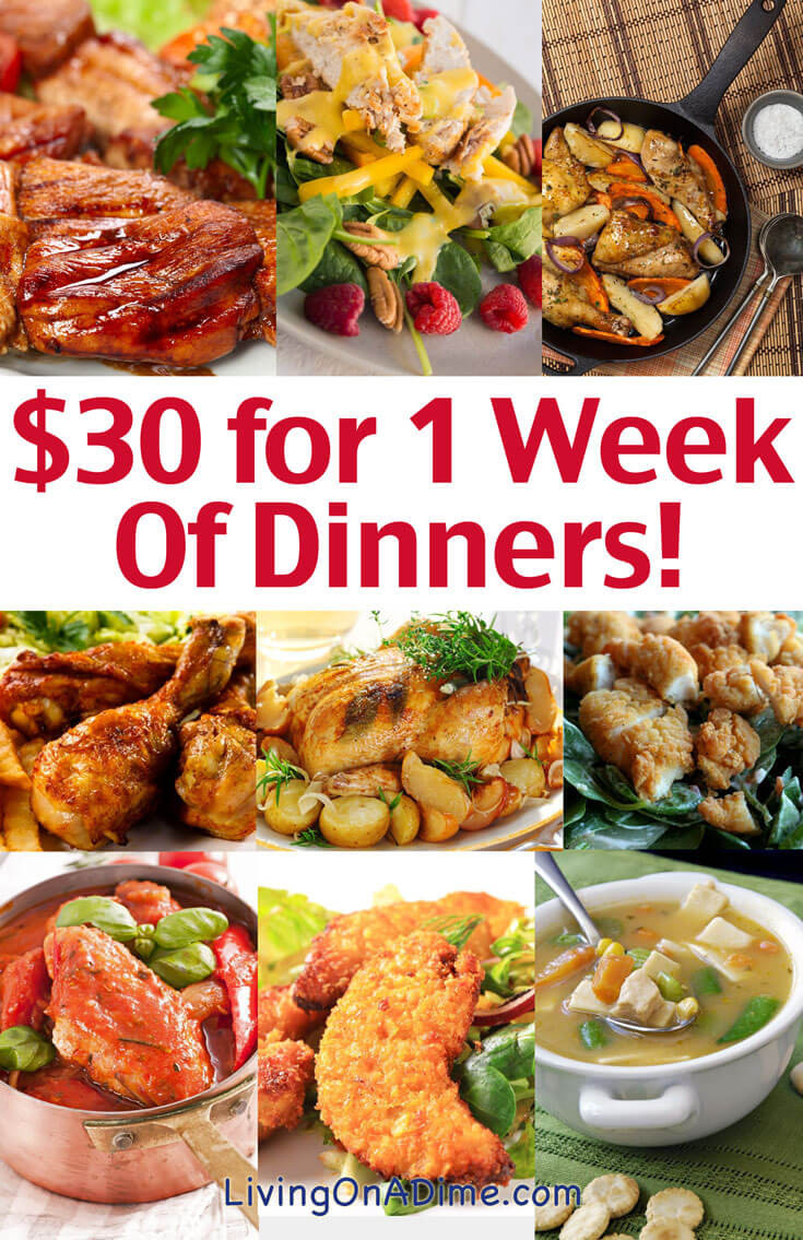 Healthy Family Dinners On A Budget  Cheap Family Dinner Ideas $30 for 1 Week of Dinners