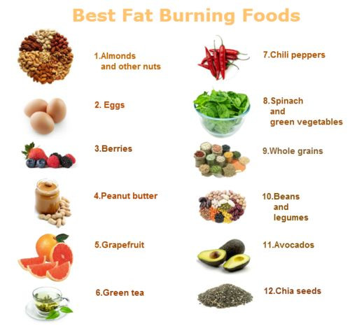Healthy Fat Burning Snacks  Healthy Fat Burning Foods and advice to help you lose