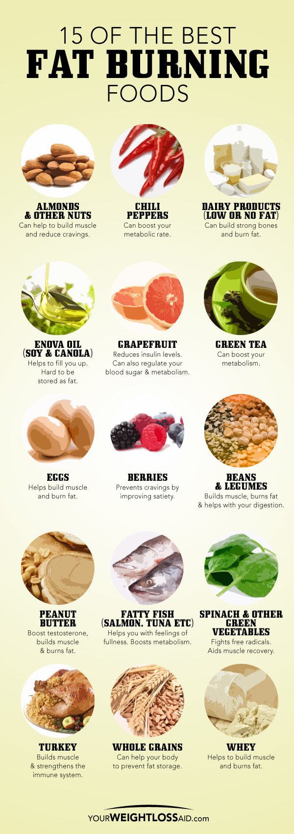 Healthy Fat Burning Snacks  Fat burning foods for men amukamara contract the fastest