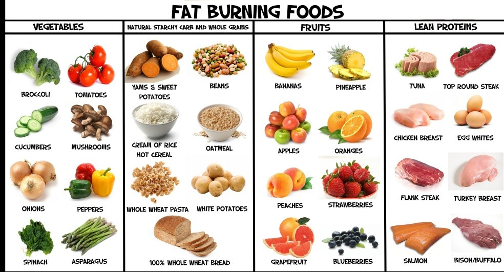 Healthy Fat Burning Snacks  About Healthy Food Pyramid Racipes for Kids Plate