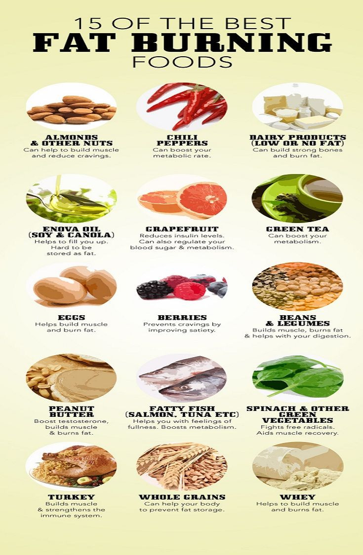 Healthy Fat Burning Snacks  Fat Burning Foods Supplement Reviews Blog