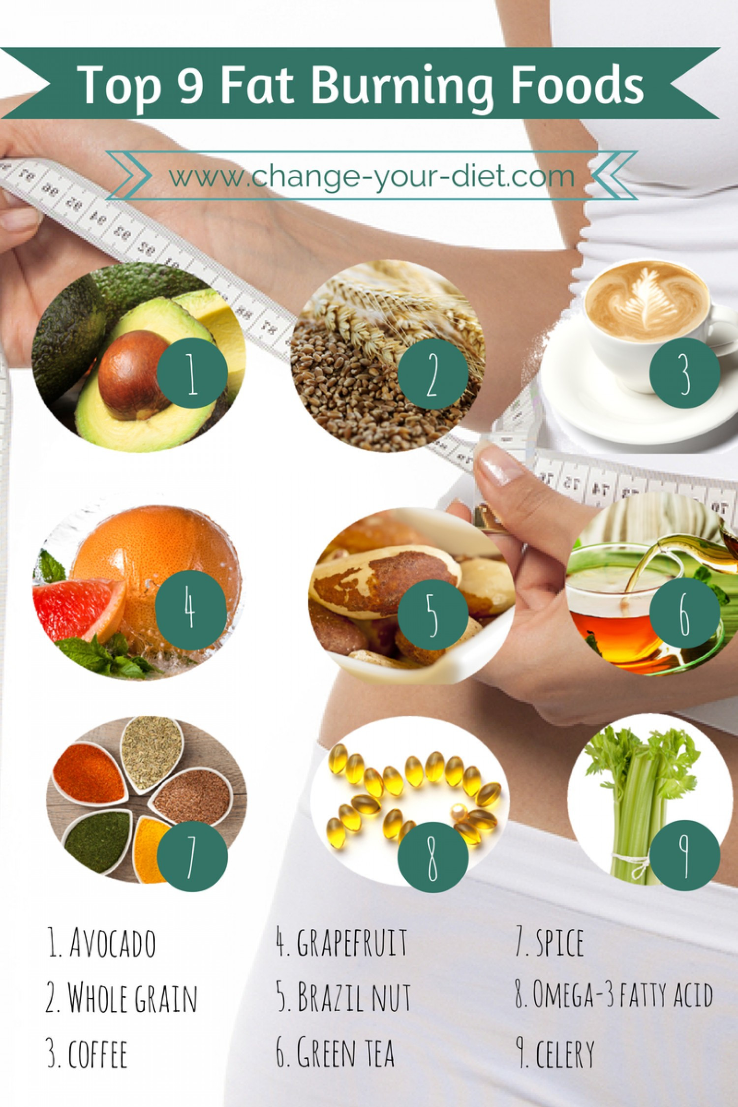Healthy Fat Burning Snacks  Resumes CV Fat Burning Foods
