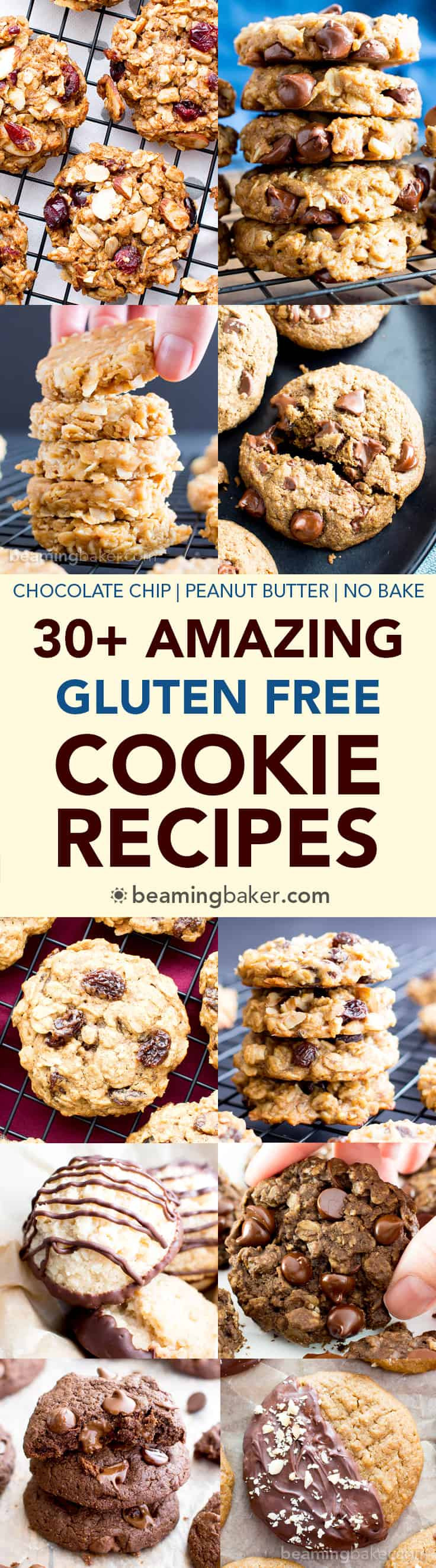 Healthy Gluten Free Cookie Recipes  30 Amazing Gluten Free Cookie Recipes Vegan Dairy Free