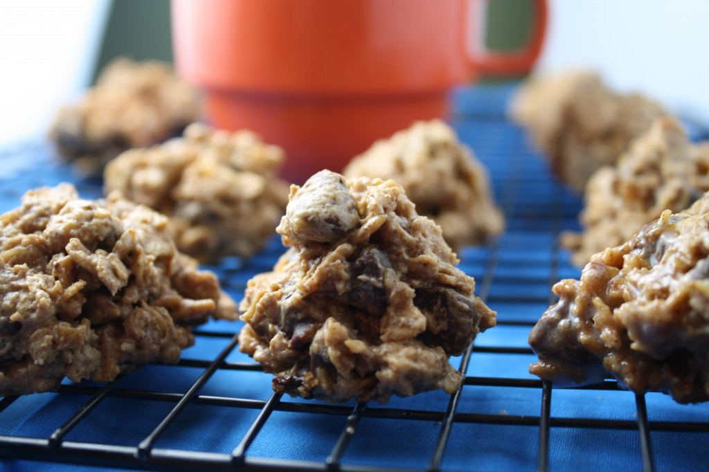 Healthy Gluten Free Oatmeal Cookies  10 Days of Gluten Free Stocking Up & Healthy Oatmeal