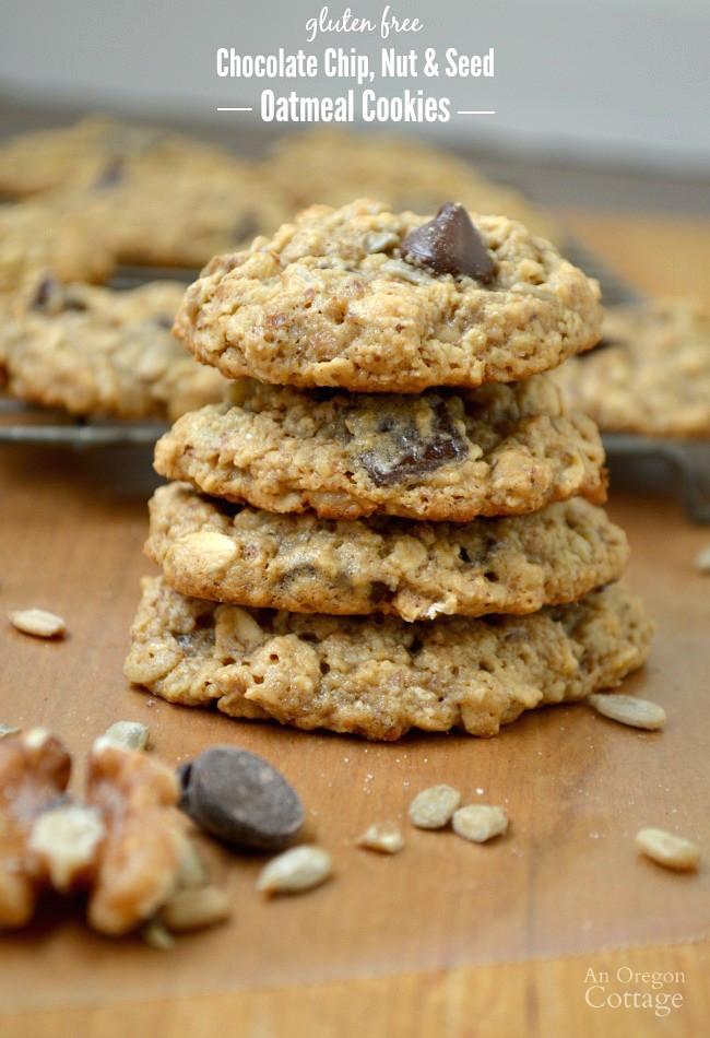 Healthy Gluten Free Oatmeal Cookies  Chocolate Chip Nut & Seed Oatmeal Cookies Gluten Free