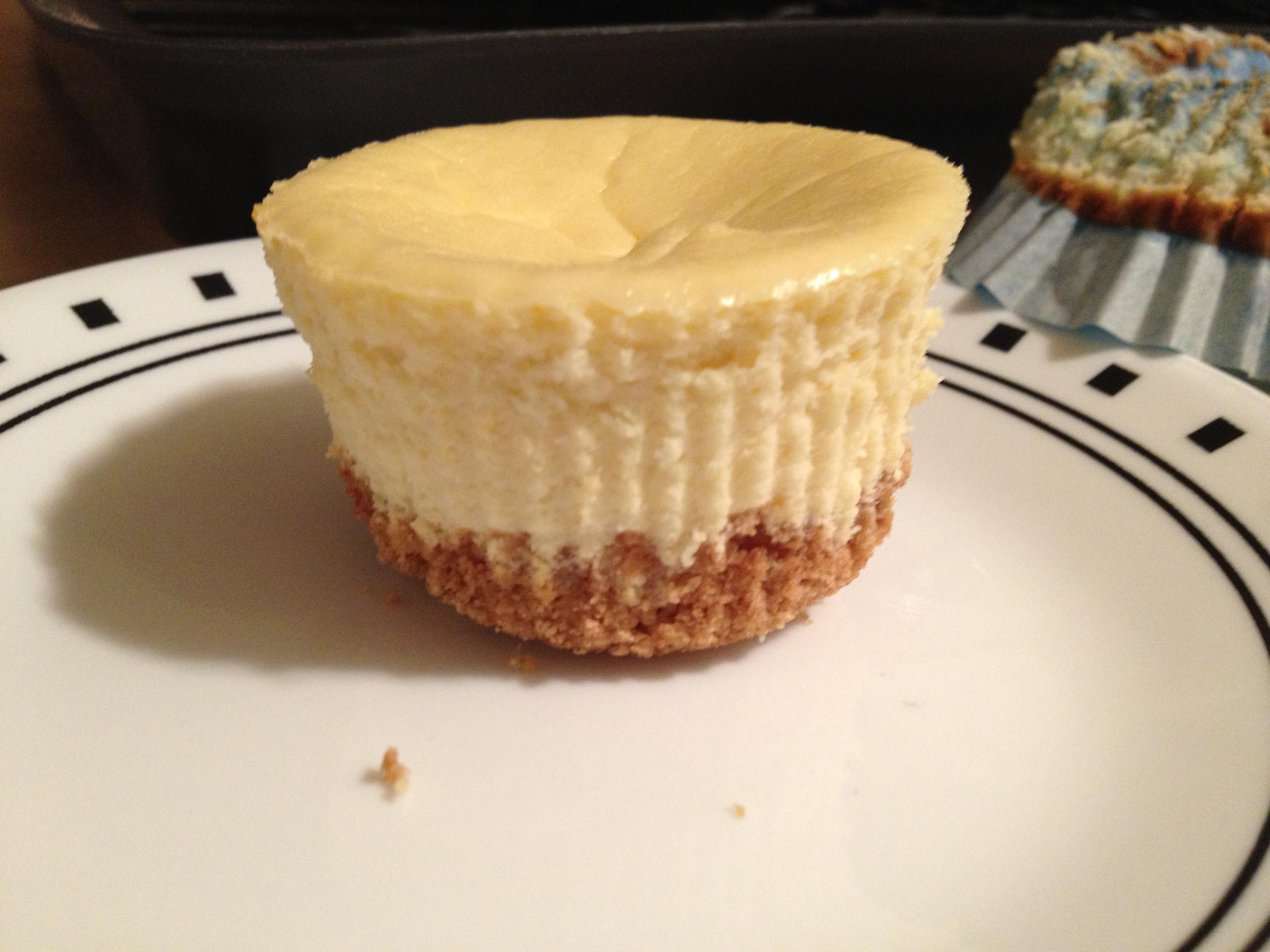 Healthy Greek Yogurt Dessert Recipes  Healthy Greek Yogurt Mini Cheesecake Recipe hungry and fit