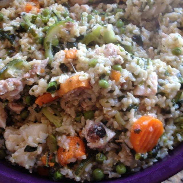 Healthy Ground Chicken Casserole  Healthy Casserole for your Dogs CA GSP Rescue
