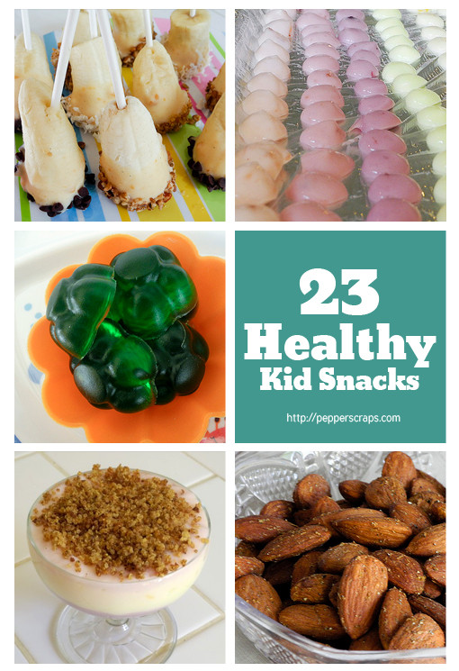 Healthy Homemade Snacks For Toddlers  23 Healthy Kid Snacks – Pepper Scraps