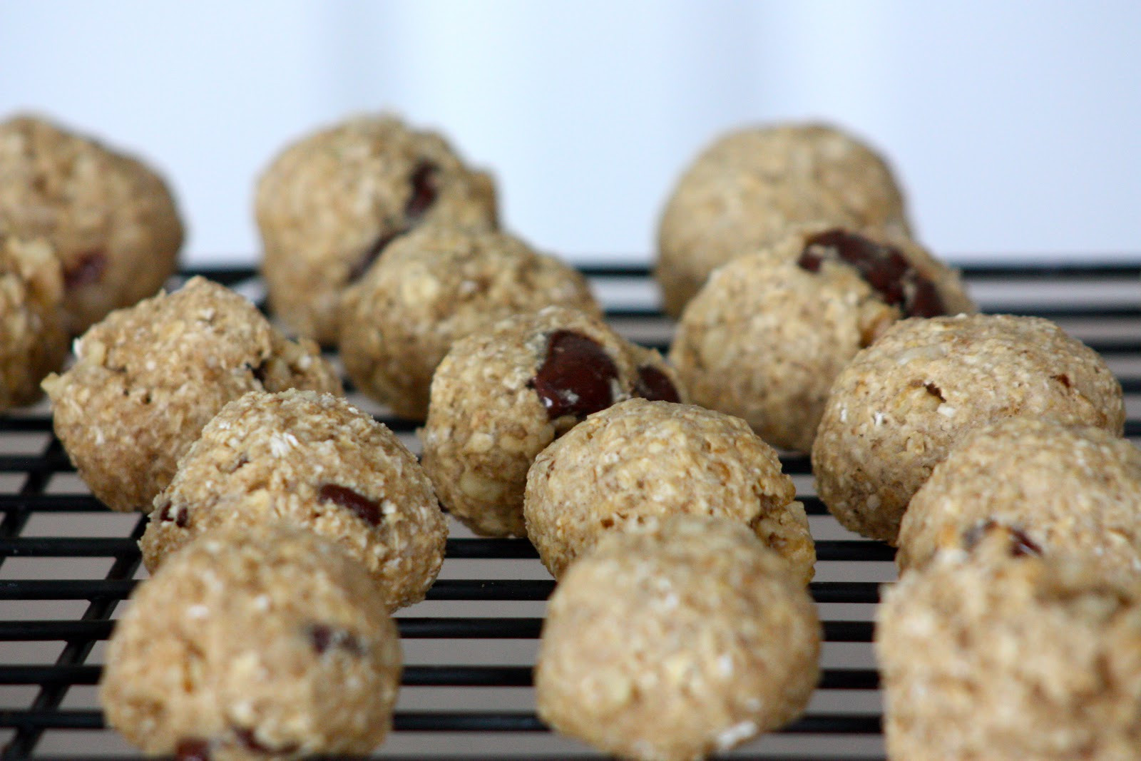 Healthy Honey Oatmeal Cookies  A Musing Mamma Healthy Honey Oatmeal Chocolate Chip