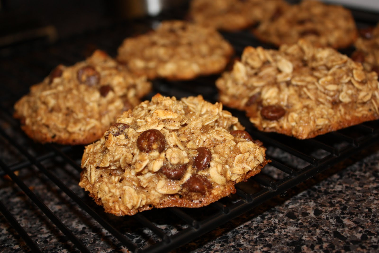 Healthy Honey Oatmeal Cookies  Karrissa s Kitchen Healthy Honey Oatmeal Cookies