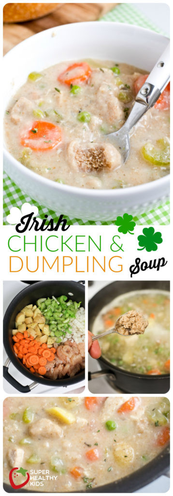 Healthy Irish Recipes  Healthy Irish Chicken and Dumpling Soup Recipe