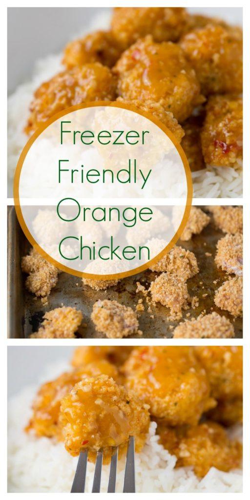 Healthy Kid Friendly Chicken Recipes  Freezer Friendly Healthy Orange Chicken