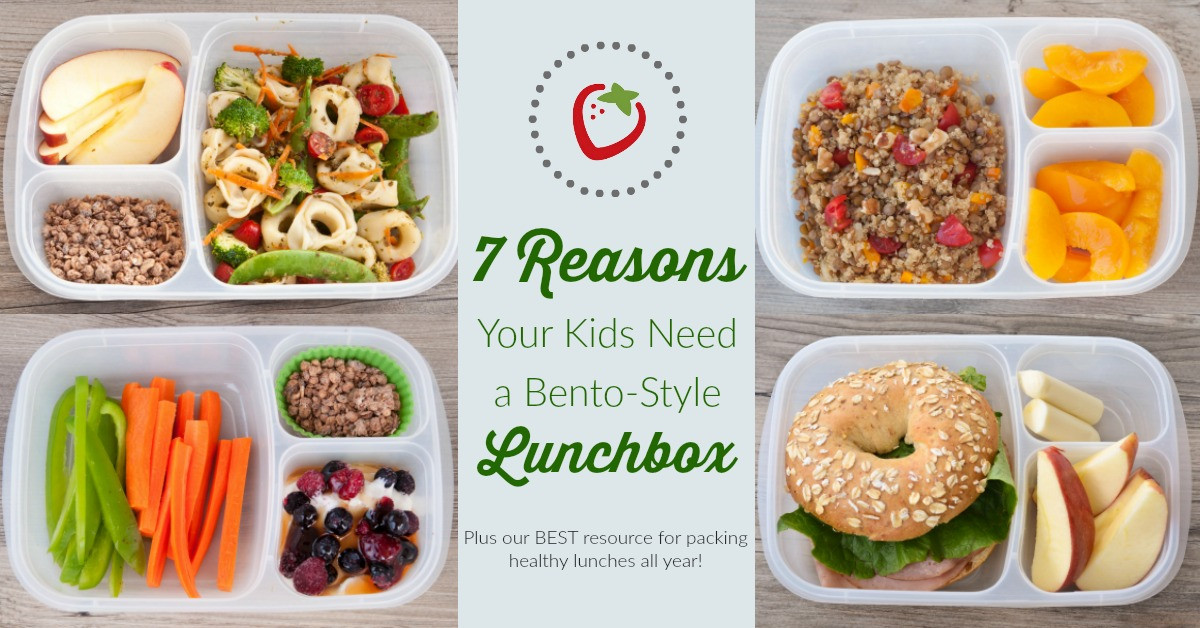 Healthy Kid Lunches  7 Reasons Why Your Kids Need a Bento Style Lunchbox