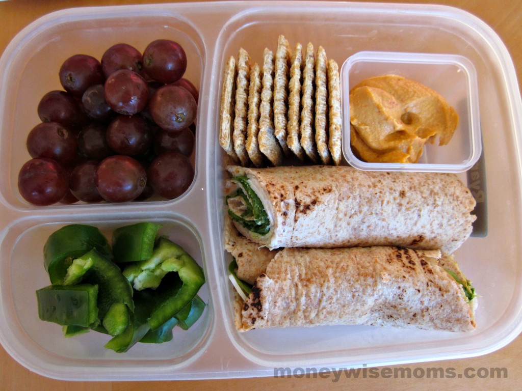 Healthy Kid Lunches  Healthy School Lunches My Kids Faves Moneywise Moms