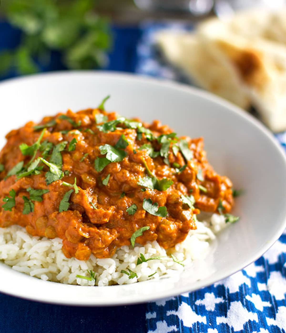 Healthy Lentil Recipes  Red Curry Lentils Recipe Pinch of Yum