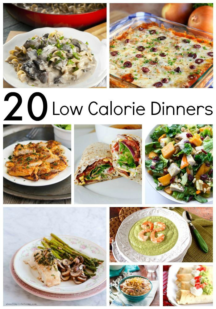 Healthy Low Cal Dinners  20 Low Calorie Dinners