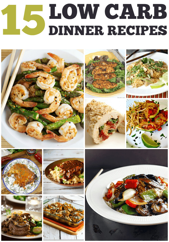 Healthy Low Carb Dinner Recipes  Recipes for 15 Low Carb Dinners
