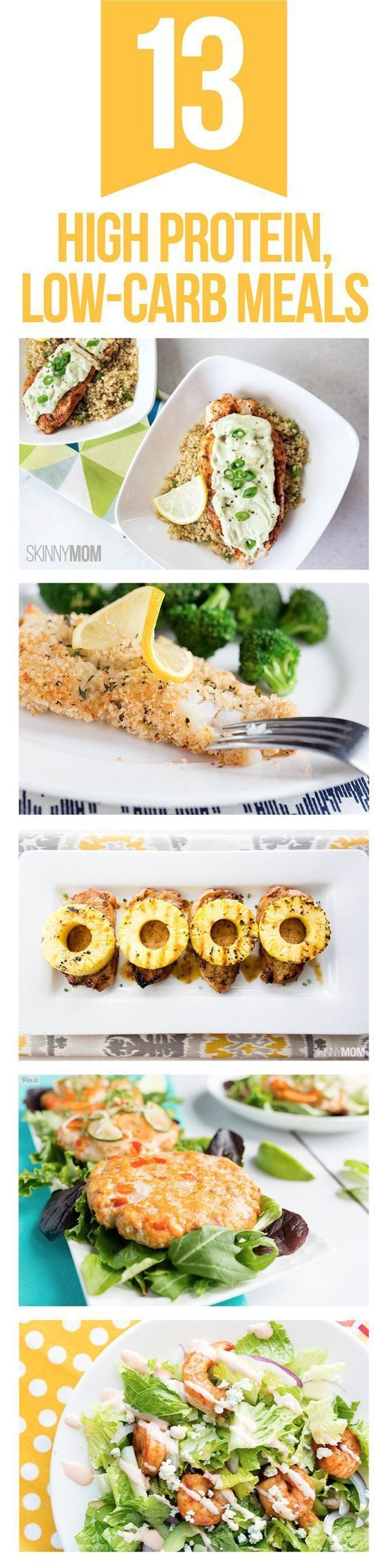 Healthy Low Carb High Protein Recipes  13 Low Carb High Protein Recipes