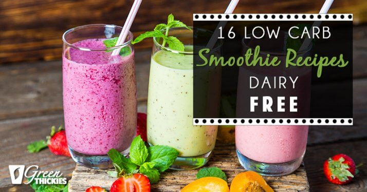 Healthy Low Carb Smoothies  16 Low Carb Smoothie Recipes Dairy Free