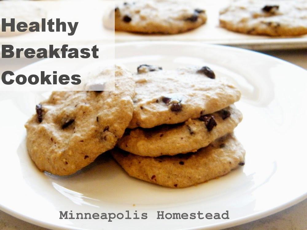 Healthy Low Sugar Breakfast  High Protein Banana Chocolate Chip Breakfast Cookies