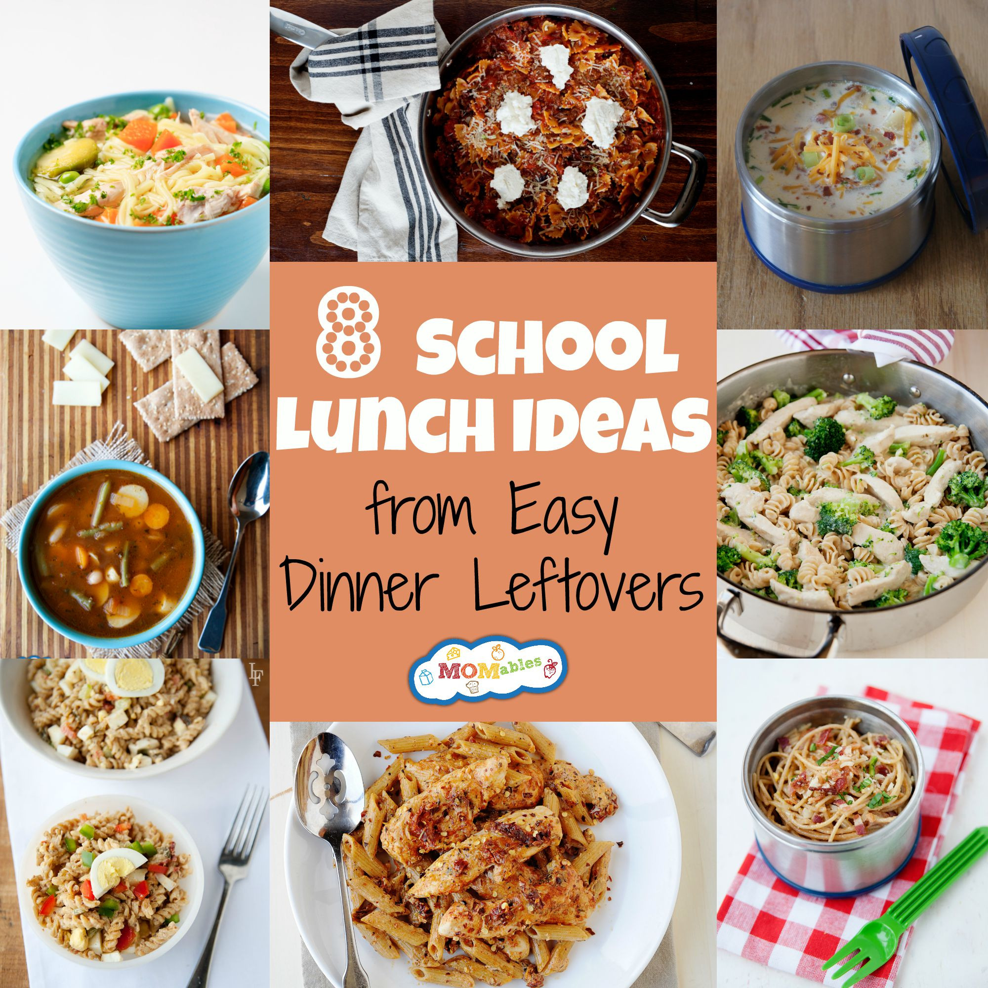 Healthy Lunch And Dinner Ideas  8 School Lunch Ideas from Easy Dinner Leftovers MOMables