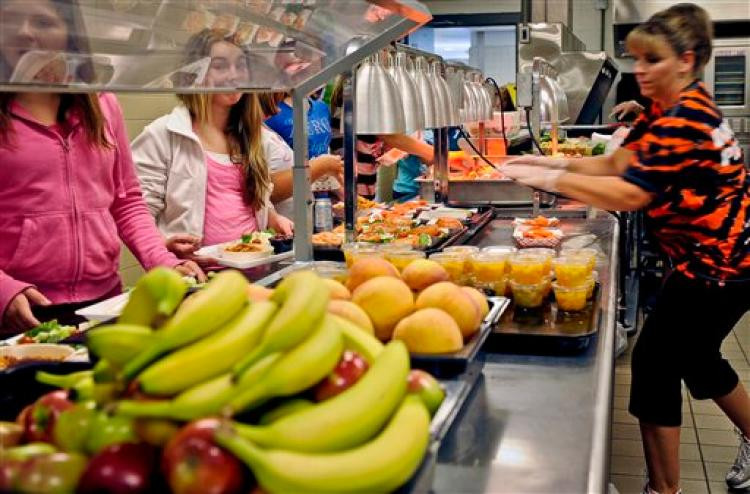 Healthy Lunches For College Students  Schools turn up their noses at healthy new lunches NY