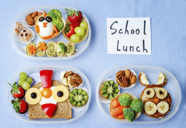 Healthy Lunches For Picky Eaters  7 School Lunch Tips for Picky Eaters