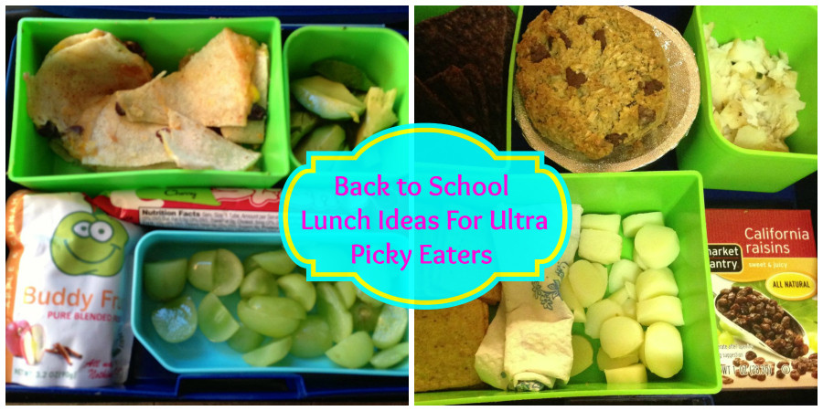 Healthy Lunches For Picky Eaters  Back to School Lunch Ideas For Ultra Picky Eaters