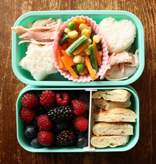 Healthy Lunches For Preschoolers  Healthy Nutritious Lunch Ideas for 1 and 2 Year Old