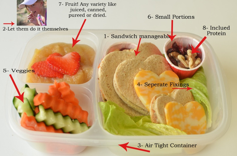 Healthy Lunches To Take To School  Top Ten School Lunch Ideas and Tips and Link Party
