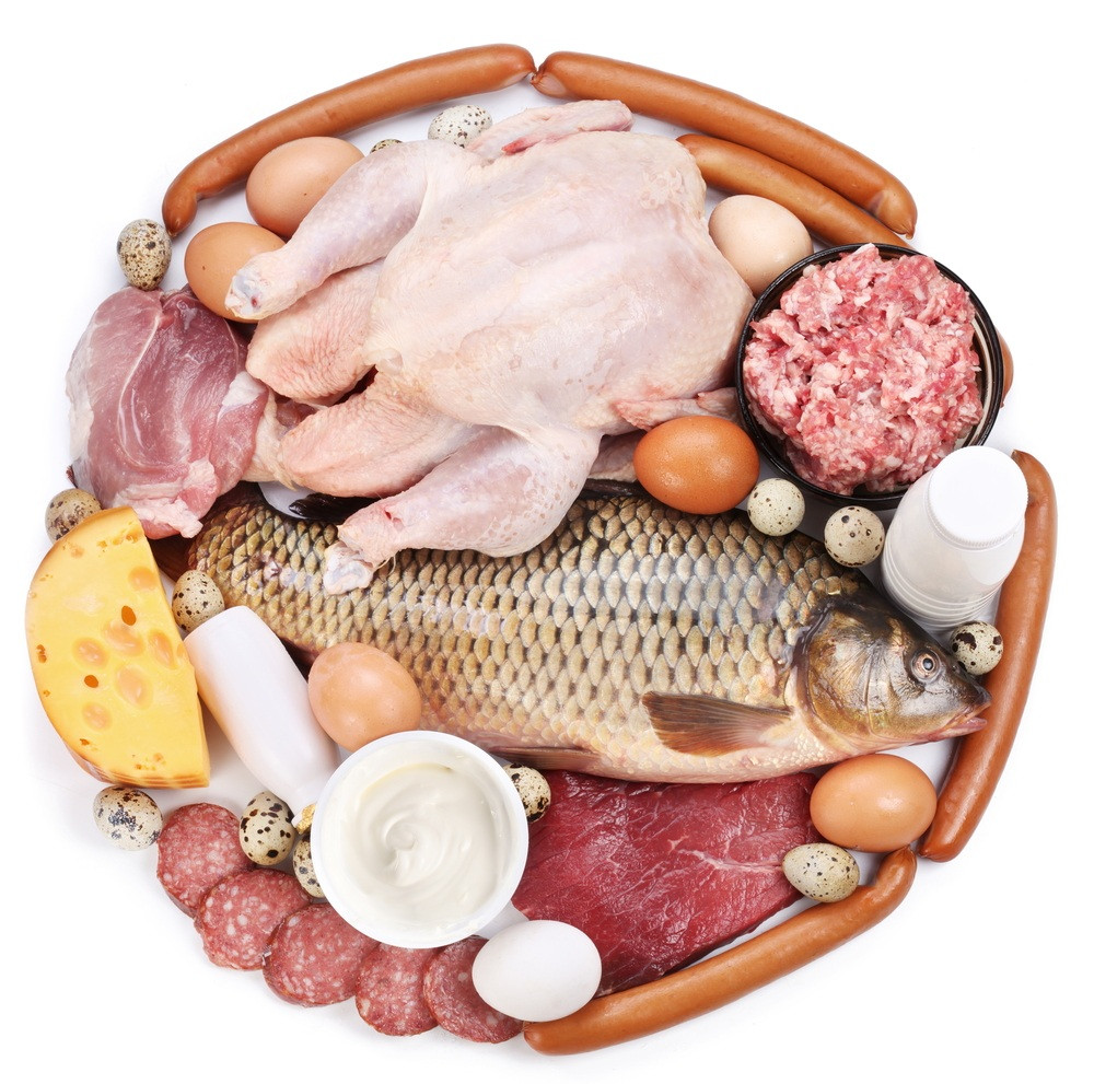 Healthy Meat Snacks  The effect of the protein on the body