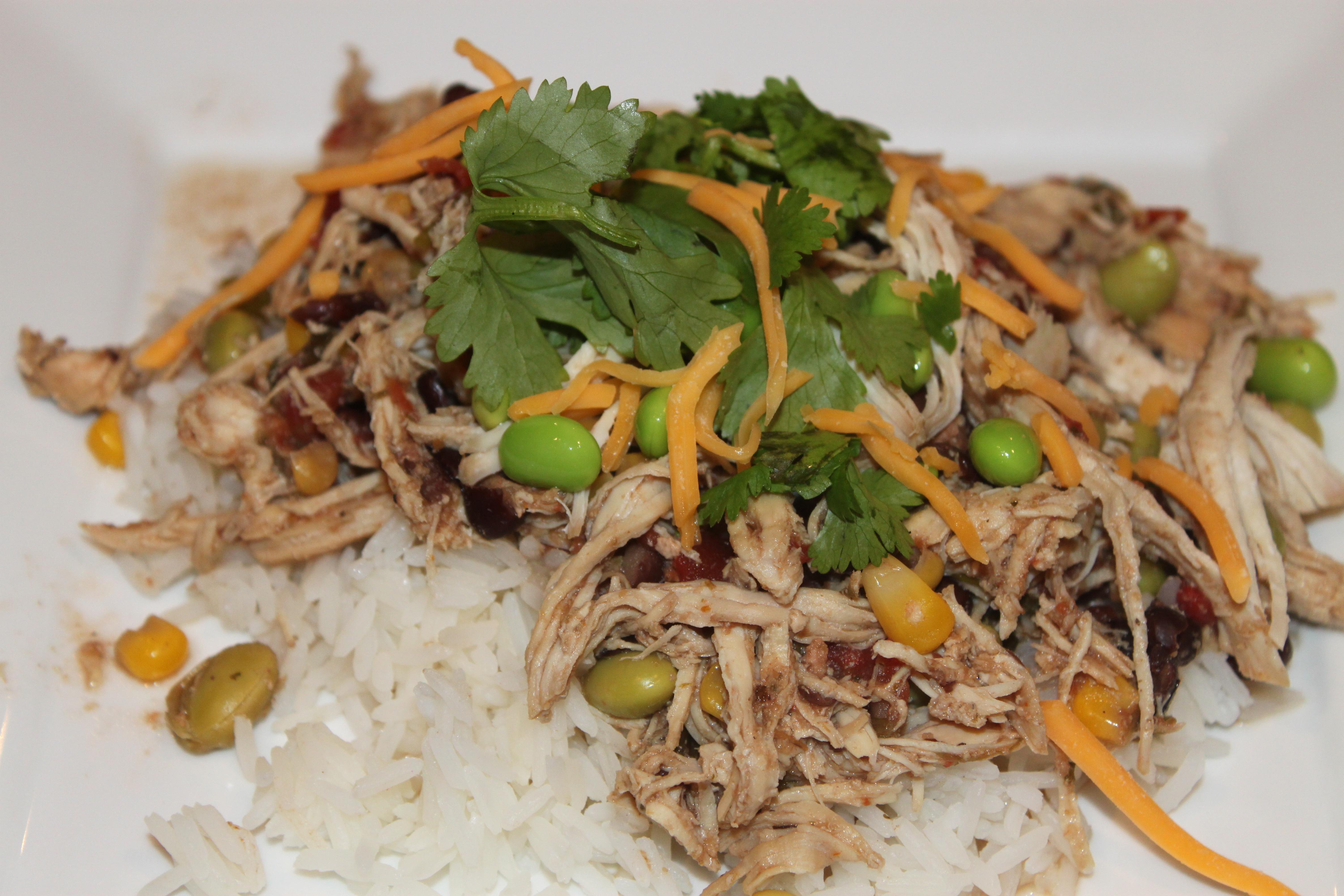 Healthy Mexican Crock Pot Recipes  Healthy Crock Pot Recipes Mexican Chicken