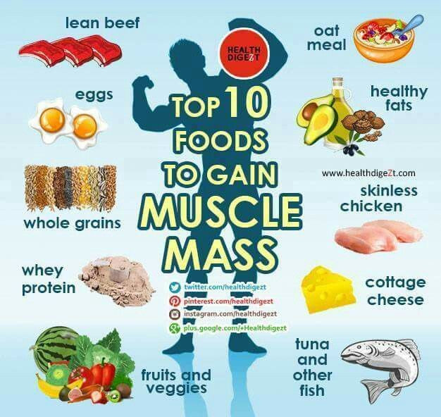 Healthy Muscle Building Snacks  1000 ideas about Muscle Gain Diet on Pinterest