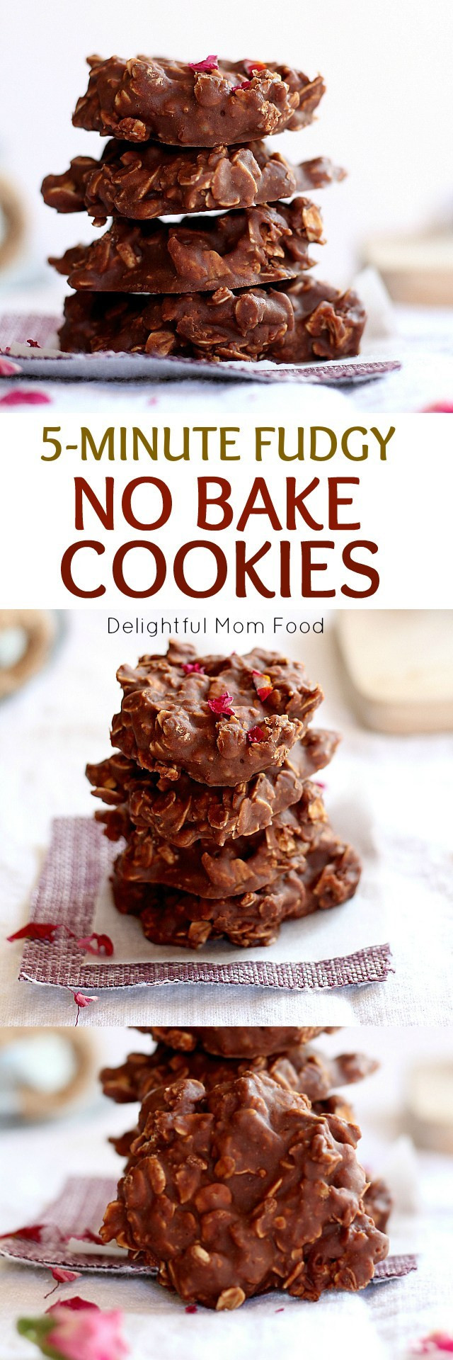 Healthy No Bake Chocolate Peanut Butter Oatmeal Cookies  Fudgy Chocolate Peanut Butter Oatmeal No Bake Cookies