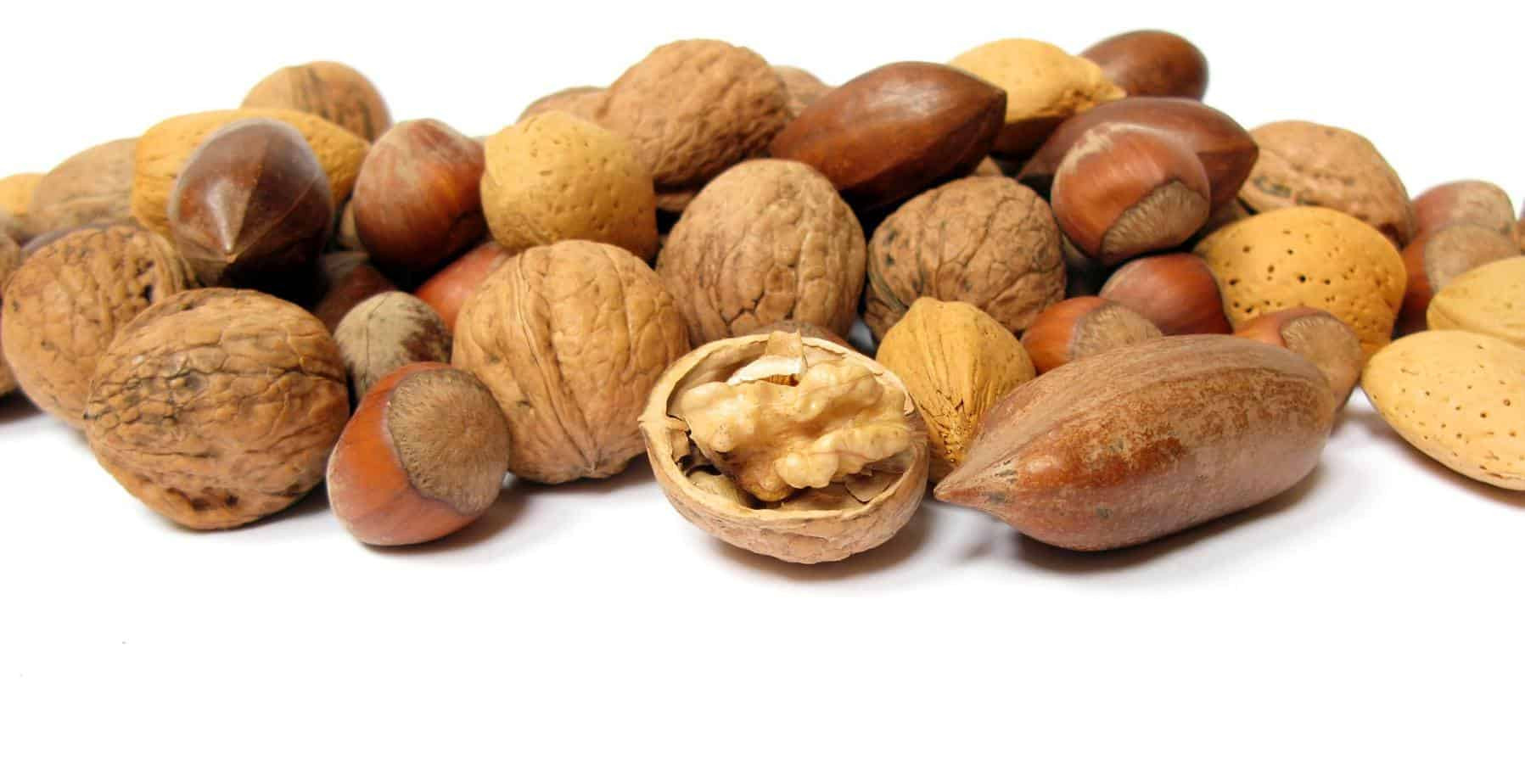 Healthy Nut Free Snacks  Nuts for Nutrition 7 Health Boosting Nuts You Should Be