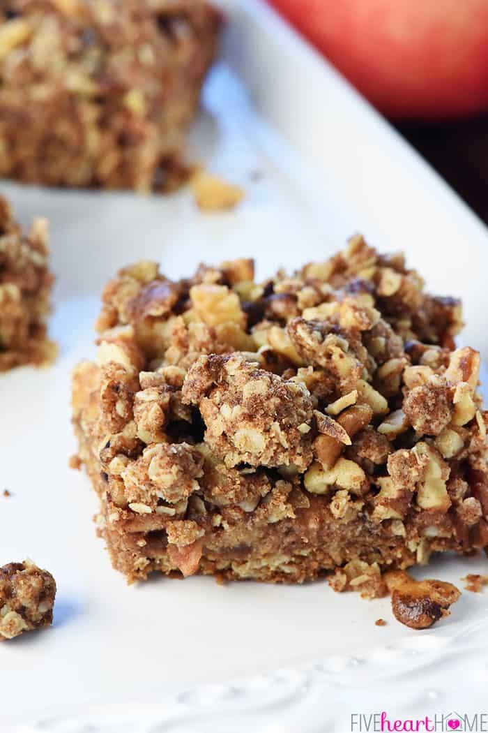 Healthy Oatmeal Breakfast Bars  Healthy Apple Butter Bars