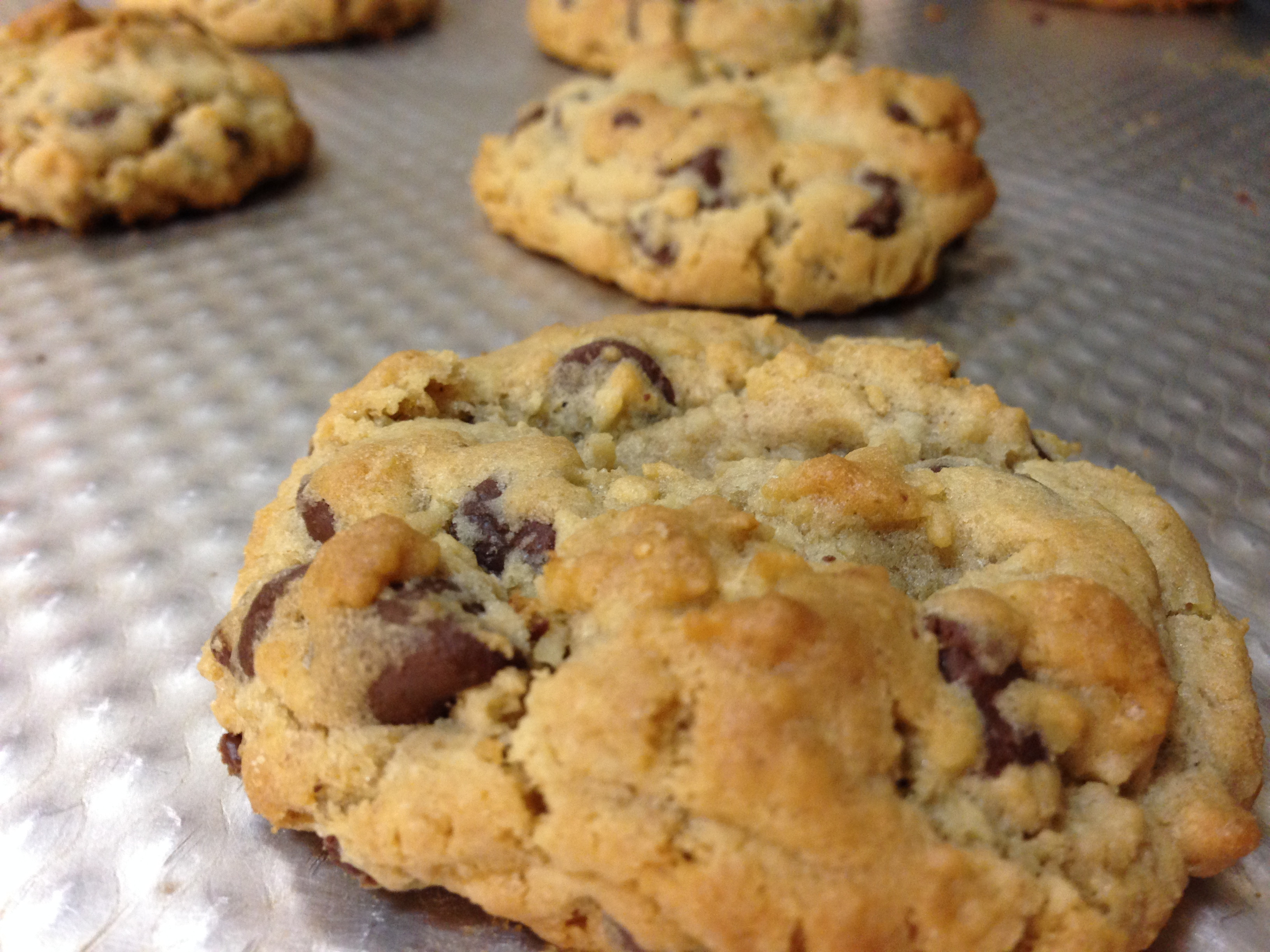 Healthy Oatmeal Choc Chip Cookies  easy healthy oatmeal chocolate chip cookie recipe