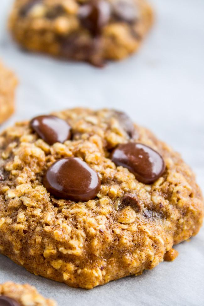 Healthy Oatmeal Choc Chip Cookies  heart healthy oatmeal chocolate chip cookies recipes