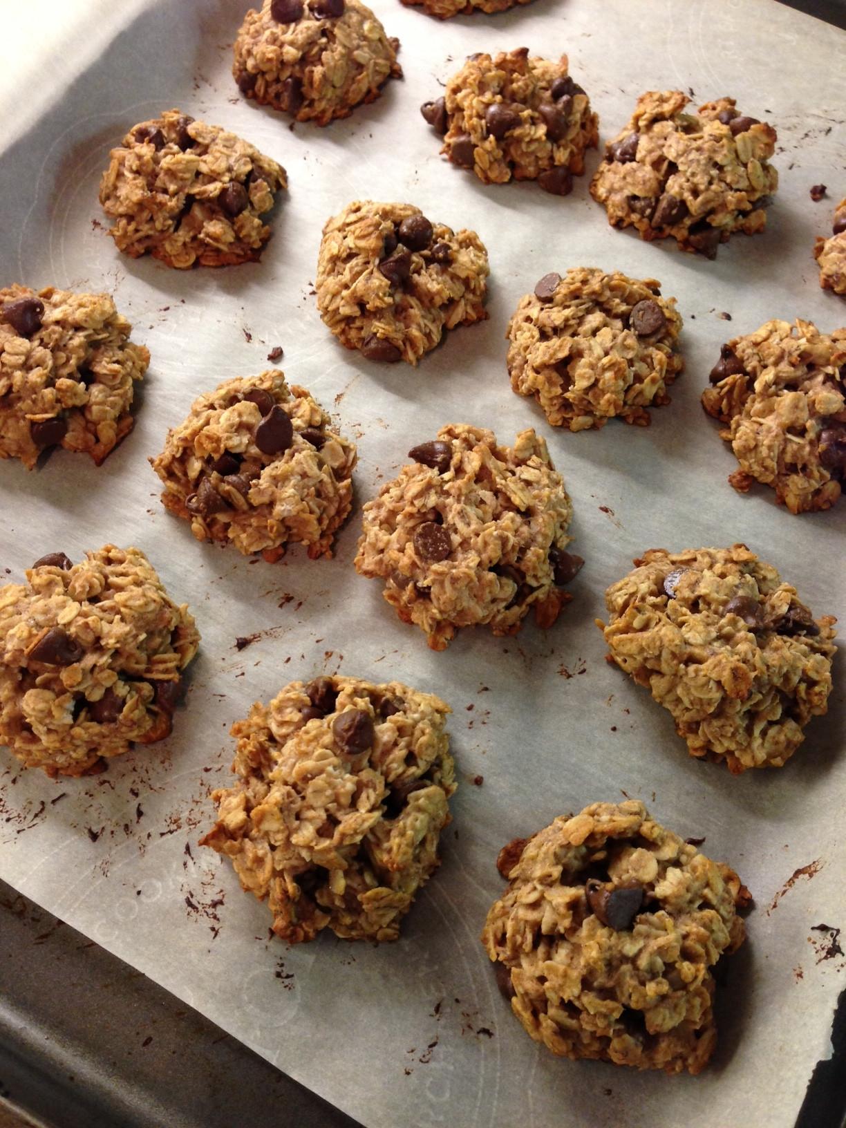Healthy Oatmeal Choc Chip Cookies  Healthy Oatmeal Chocolate Chip Cookies Lauren Follett