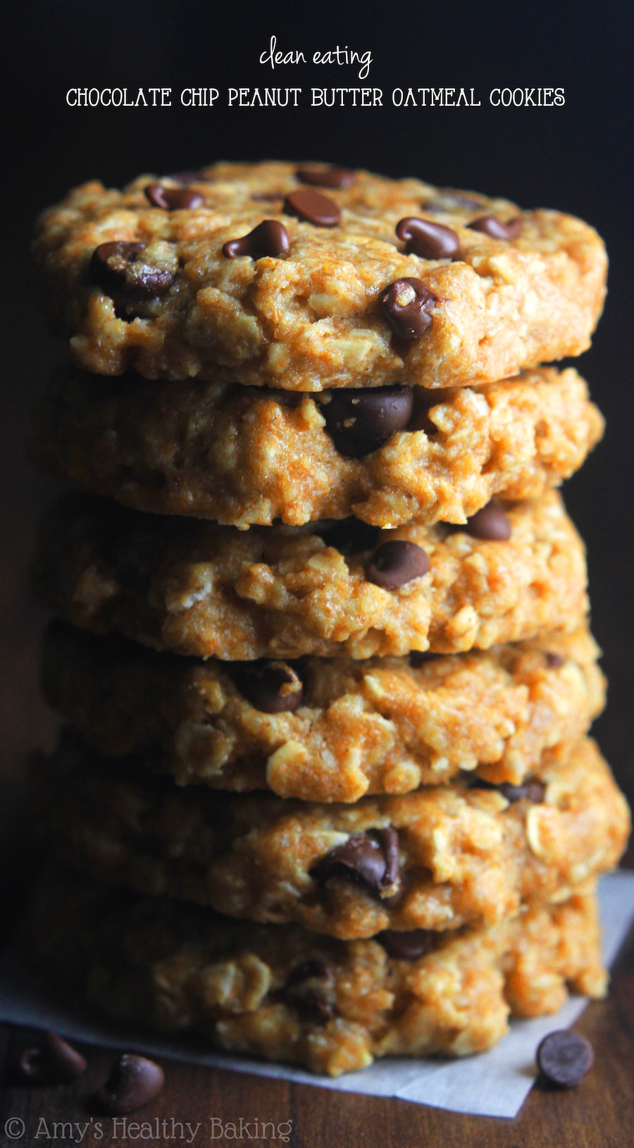 Healthy Oatmeal Chocolate Chip Cookies Applesauce  chewy applesauce and peanut butter cookies recipe