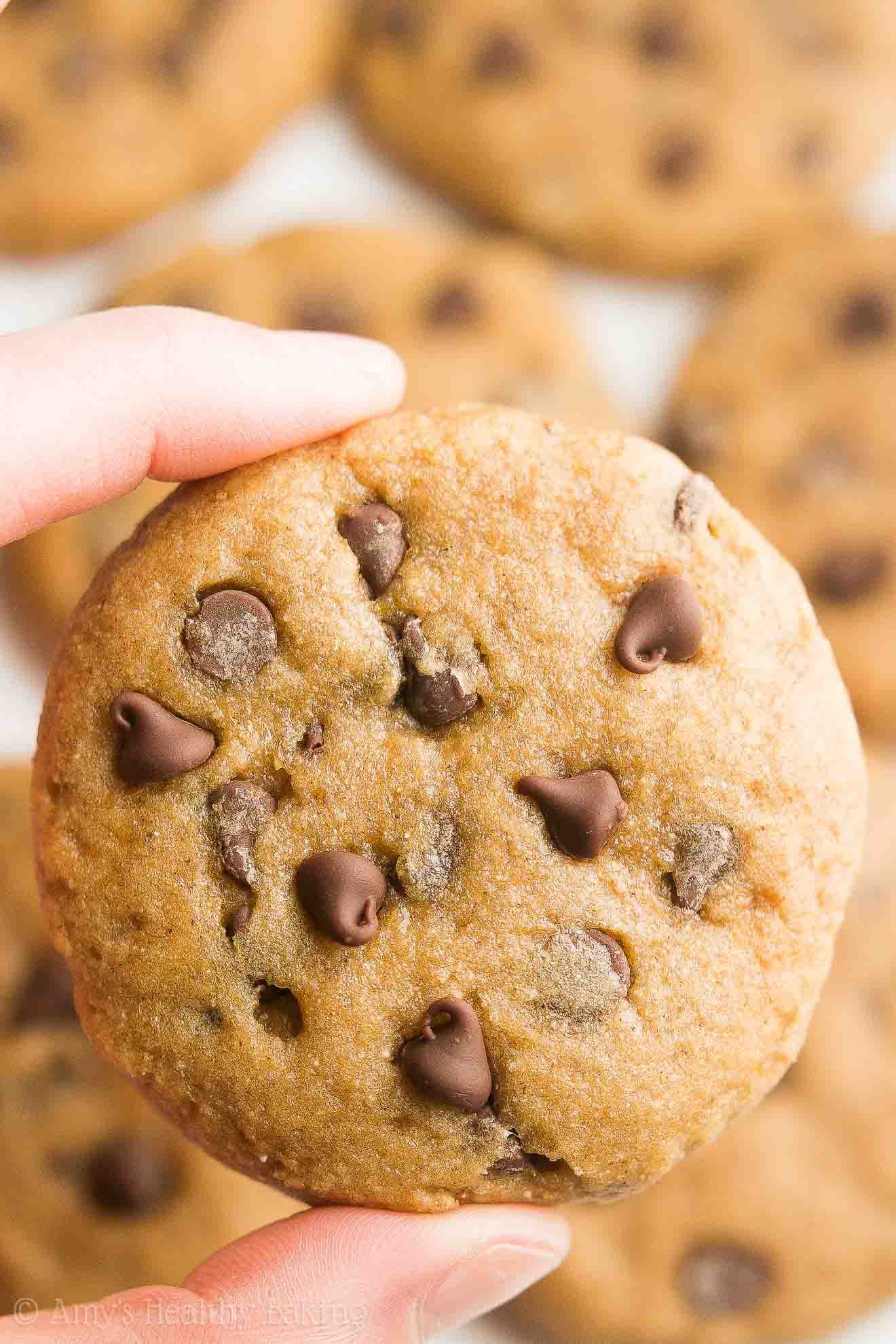 Healthy Oatmeal Chocolate Chip Cookies Applesauce  banana applesauce chocolate chip cookies