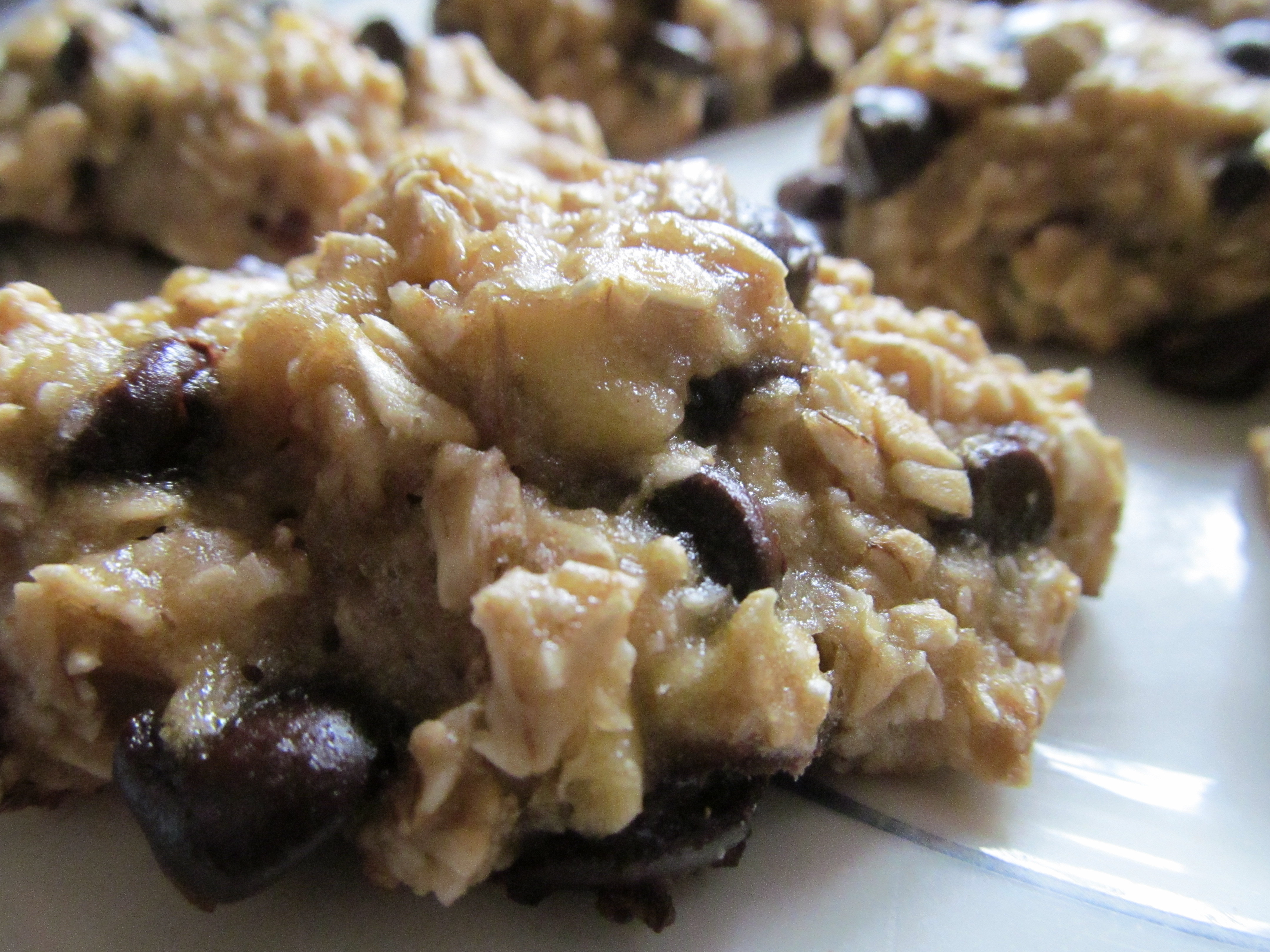 Healthy Oatmeal Chocolate Chip Cookies  Healthy Oatmeal Chocolate Chip Cookies