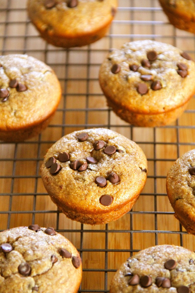 Healthy Oatmeal Chocolate Chip Muffins  healthy banana oatmeal chocolate chip muffins