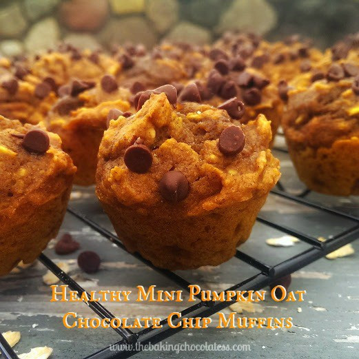 Healthy Oatmeal Chocolate Chip Muffins  Healthy Mini Pumpkin Oatmeal Chocolate Chip Muffins – The