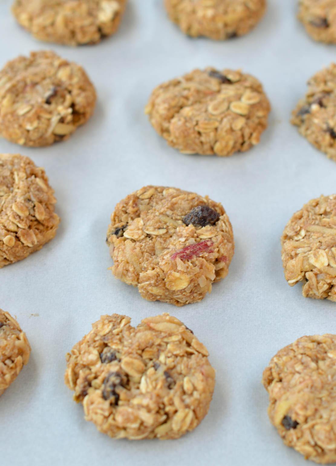 Healthy Oatmeal Cookies No Flour  apple oatmeal cookies no flour