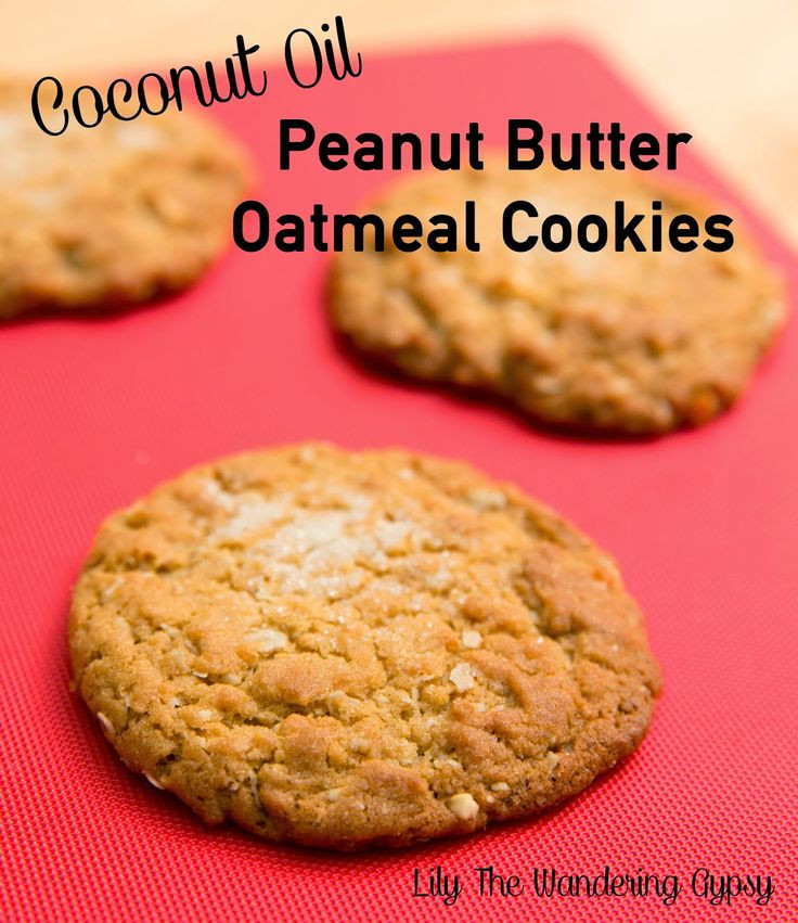 Healthy Oatmeal Cookies With Coconut Oil  Lily The Wandering Gypsy The Best Peanut Butter Oatmeal