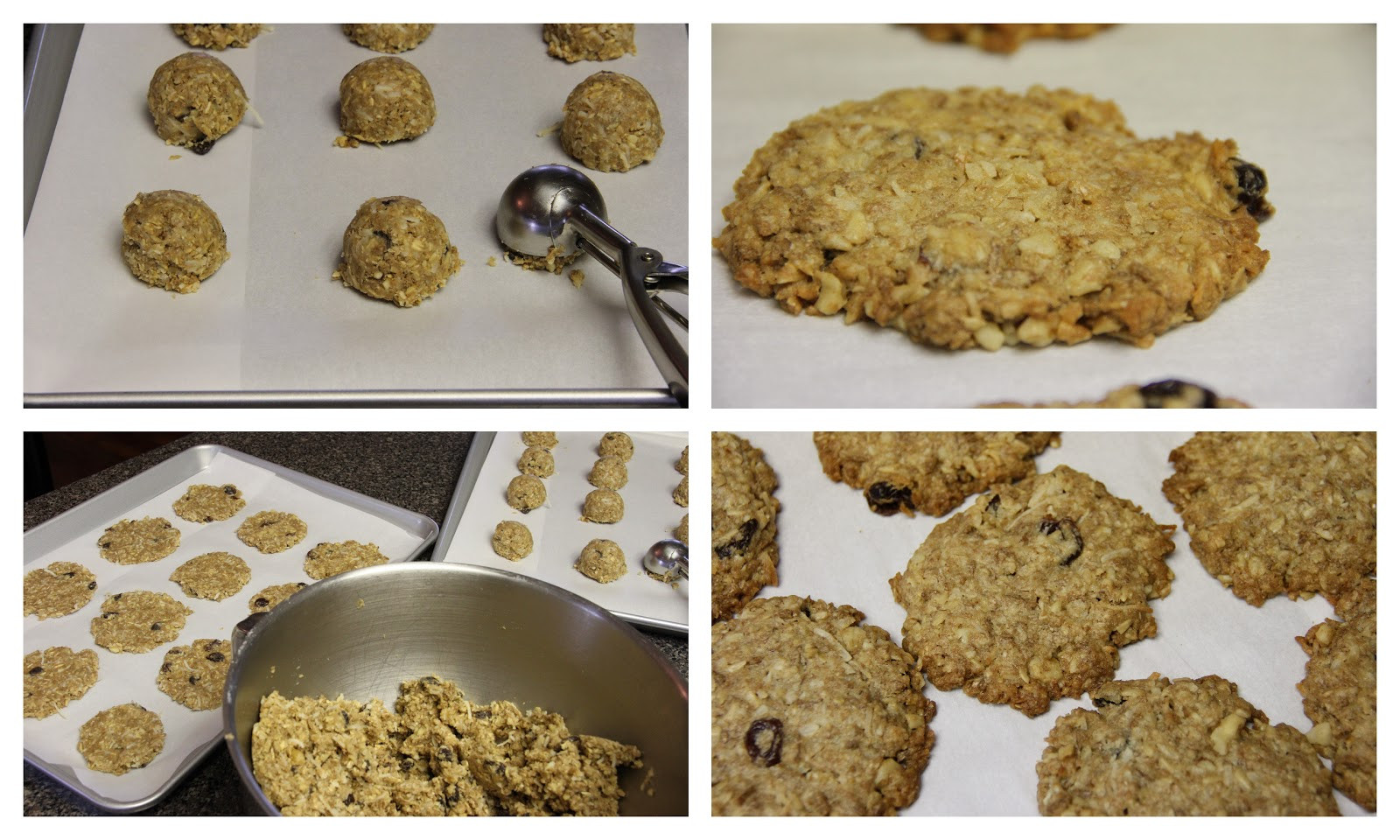 Healthy Oatmeal Cookies With Coconut Oil  Mennonite Girls Can Cook Coconut Oil Oatmeal Cookies