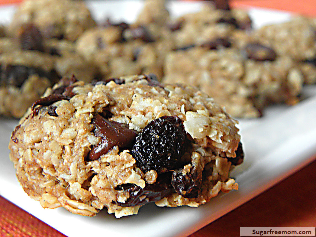 Healthy Oatmeal Cookies Without Sugar  Healthy Oatmeal Raisin Cookies No Sugar Added